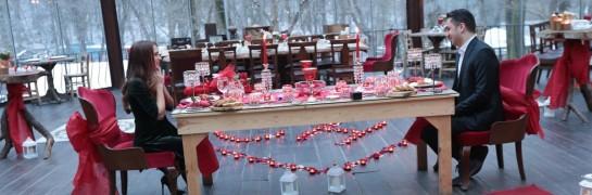 Yeşili ve Doğayı Sevenler İçin Romantik Evlilik Teklifi Vip Paket