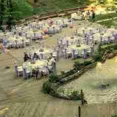 Düğün & Davet Organizasyonları
