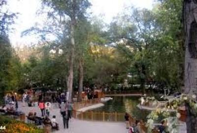 Kuğulu Park'ta Romantik Evlilik Teklifi - 2232