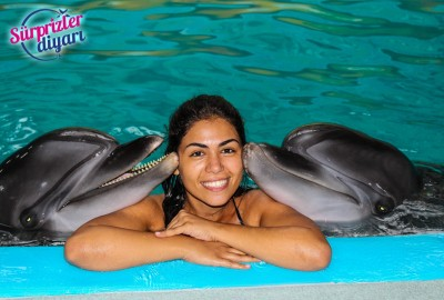 Private Swim with Dolphins and Surprise Marriage Proposal Çağlayan & Yeşim - 421
