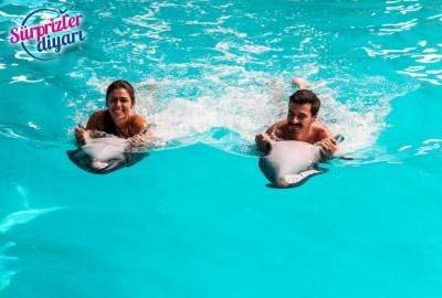 Private Swim with Dolphins and Surprise Marriage Proposal Çağlayan & Yeşim - 424