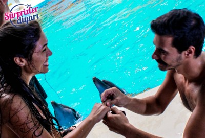 Private Swim with Dolphins and Surprise Marriage Proposal Çağlayan & Yeşim - 426