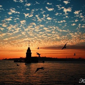 Marriage Proposal by Reserving the Maiden's Tower's Bar / Eco Package